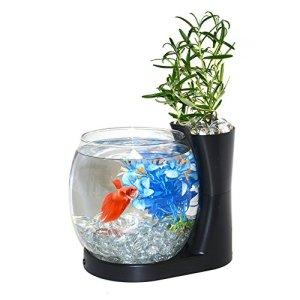 Elive Betta Fish Bowl / Betta Fish Tank with Planter, Small 0.75 Gallon Aquarium, LED Light Timer, Black 11