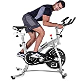 Merax Indoor Cycling Bike Belt Drive Stationary Bicycle Exercise Bikes with LED Monitor for Home Cardio Workout (Silver)