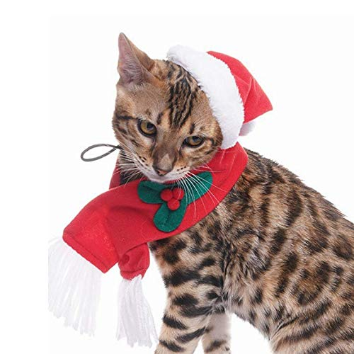 EXPAWLORER Christmas Cat Costume Santa Hats Scarf Set, Warm Xmas Gift Adorable Accessories Soft Hat Scarf Cat Puppy 1