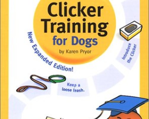 Best Clicker Training Books For Dogs
