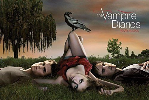 Vampire Diaries Love Sucks Fantasy Drama TV Television Show Poster Print 24 by 36