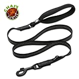 Chai's Choice Best New 2018! Outdoor Adventure II Dog Leash. 3M Reflective with Soft Sponge Handle. Matching Harness Available. (Large, Black)