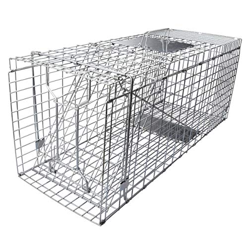 Gingbau Live Cat Trap Collapsible Humane Animal Cage Trap for Armadillo, Groundhog, Opossum, Large Squirrel, Rabbit, Skunk and Mink - 32' x 11' x 13'