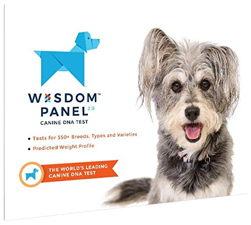 Wisdom Panel Dog DNA Test Kit - Canine Breed Identification and Ancestry Information 1