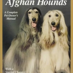 Afghan Hounds: Everything About Purchase, Care, Nutrition, Behavior, and Training (Complete Pet Owner's Manual) 19