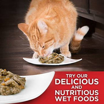 Hills-Science-Diet-Dry-Cat-Food-Adult-Urinary-Hairball-Control-Chicken-Recipe