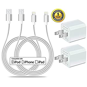 Certified 5W 1A USB Power Wall Charger with 2-Pack 10FT/3M [Heavy Duty] Nylon Braided 8 Pin Lightning to USB Cable Charger (Silver) (4-Pack) (2 Pack 10 Feet + 2 USB Adapters)