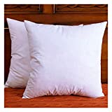 DOWNIGHT Set of 2, Cotton Fabric Throw Pillow Inserts, Down and Feather Decorative Pillow Insert
