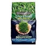 Pennington 100526677 Smart Seed Tall Fescue Grass Seed, 7 LB