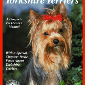 Yorkshire Terriers (Complete Pet Owner's Manuals) 2