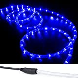 WYZworks 300 ft of Blue PRE-Assembled LED Rope Lights - 2 Wire Christmas Holiday Decoration Indoor/Outdoor Lighting   UL Certified