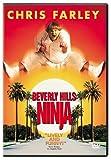 Beverly Hills Ninja poster thumbnail