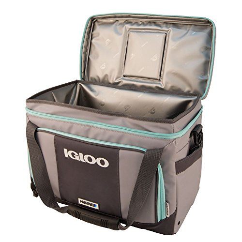 Igloo Coast Cooler Marine-Gray/Seafoam