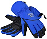 LETRY Waterproof Womens Mens Ski Gloves - Unisex Winter Outdoor Sport Thermal Warm Snow Skiing Snowmobile Snowboarding Gloves Blue L