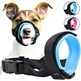 Gentle Muzzle Guard for Dogs - Prevents Biting and Unwanted Chewing Safely - New Secure Comfort Fit - Soft Neoprene Padding - No More Chafing - Training Guide Helps Build Bonds with Pet (M, Blue)