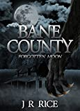 Bane County: Forgotten Moon (Book 1)