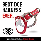 ORIGINAL DURABLE Buddy Belt Classic LEATHER Dog Harness (5, Red)