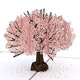 Lovepop Cherry Blossom Pop Up Card - 3D Card, Anniversary Pop Up Card, Spring Card, Greeting Card Pop Up, Card for Wife, Card for Mom, Pop Up Birthday Card, Mother's Day Card