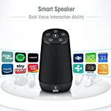 Smart Bluetooth WiFi Speaker - August Venus - Amazon Alexa Voice Service Enabled, 15W Output Power with Enhanced Bass - Black