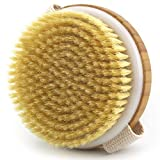 Dry Brushing Body Brush - Improves Skin's Health and Beauty - Natural Bristle - Remove Dead Skin and Toxins, Cellulite Treatment, Improves Lymphatic Functions, Exfoliates, Stimulates Blood Circulation