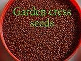 1 kg HALIM Aliv GARDEN CRESS SEEDS Lepidium Sativum Ayurveda