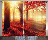 Ambesonne Woodland Curtains, Sun Beams Through Misty Old Forest in Fall Season Morning View Dreamy Picture, Living Room Bedroom Window Drapes 2 Panel Set, 108 W X 84 L Inches, Yellow Red