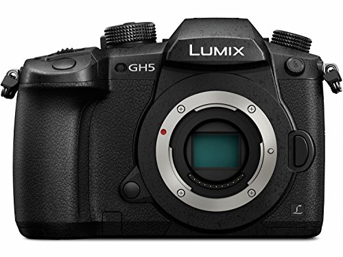 Panasonic LUMIX GH5 4K Mirrorless Camera with Lecia Vario-Elmarit + Professional Microphone Adaptor