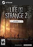 Life is Strange 2 - Episode 1 [Online Game Code]