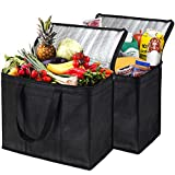 NZ Home XL Insulated Reusable Grocery Bags, Sturdy Zipper, Foldable, Washable, Heavy Duty, Stands Upright, Completely Reinforced Bottom & Handles (2 Pack)