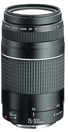 Canon-EOS-T7-DSLR-Double-Zoom-Kit-with-75-300mm-III-and-18-55mm-Camera-Kit-with-Memory-Card-Camera-Bag-and-More