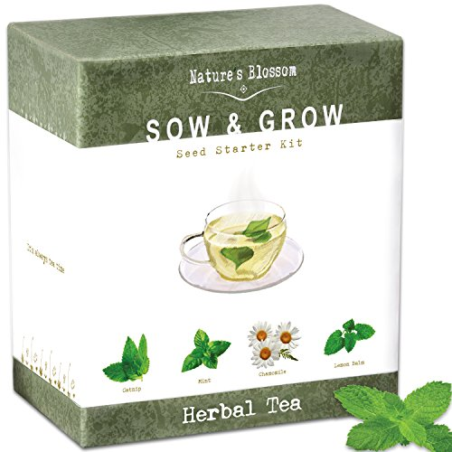 grow 4 herbal tea plants from seed indoor herb garden growing kit w organic mint seeds. Black Bedroom Furniture Sets. Home Design Ideas