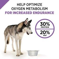 Purina-Pro-Plan-SPORT-Formula-Dry-Dog-Food