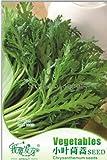New Chrysanthemum Coronarium Vegetable, Original Pack, 120+ Seeds