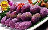 Brand New! 1bag=20pcs purple sweet potato SEEDS bonsai RARE exotic delicious MINI SWEET fruit vegetable seeds home & garden