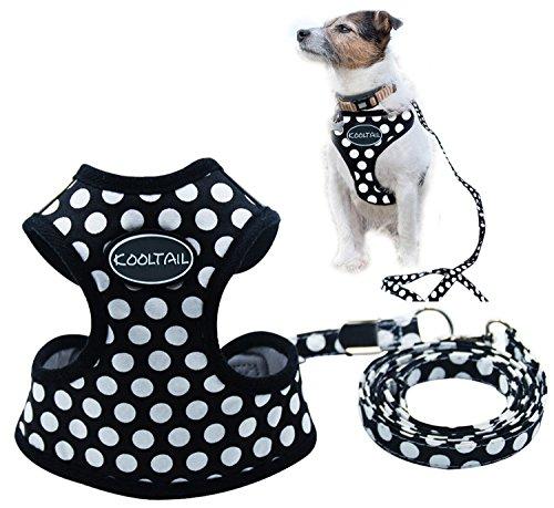 KOOLTAIL Puppy Harness Leash Small Dog Soft Mesh Pet Vest 1