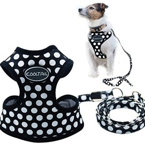 KOOLTAIL Puppy Harness Leash Small Dog Soft Mesh Pet Vest