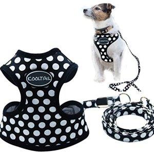 KOOLTAIL Puppy Harness Leash Small Dog Soft Mesh Pet Vest