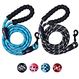 2 Packs 5 FT Strong Rope Dog Leash with Comfortable Padded Handle and Highly Reflective Threads for Small Medium Large Dogs