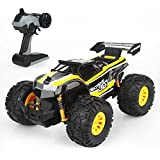 Ericoo RC Cars 1/18 Scale High Speed Monster Truck (RTR) Oversize Tires with 2.4GHz Radio Remote Controlled Vehice -Remo002
