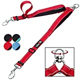 tobeDRI Double Dog Leash Coupler - 2 Padded Handles, Adjustable from 18 to 24 Inch - Heavy Duty Dual Dog Leash for 2 Dogs for Medium Large Dogs (Red)