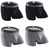 Quicksilk Men's 4 Pack Comfortable Bamboo Fiber Boxer Briefs (XL, Separate Pouch-A)