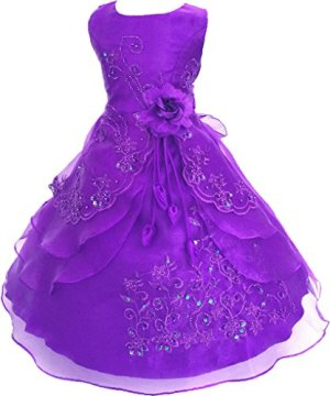 Shiny Toddler Little/Big Girls Embroidered Beaded Flower Girl Birthday Party Halloween Princess Dress with Petticoat