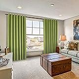 Drapifytex Extra Long 50'' x 120'' Loft Velvet Curtain Perennial Green Drapery Soft Drape Grommet Blackout Panel for Livingroom Bedroom Theater