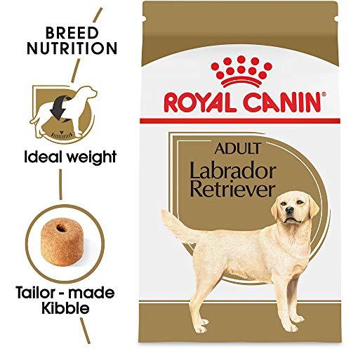 ROYAL CANIN Dog Food for Labrador Retrievers