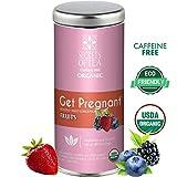 Secrets Of Tea Get Pregnant Fertility (Fruit) USDA Organic- Delicious All Natural Fertility Support- Improves Hormone Balance and Regulation - 20 Biodegradable Tea Bags