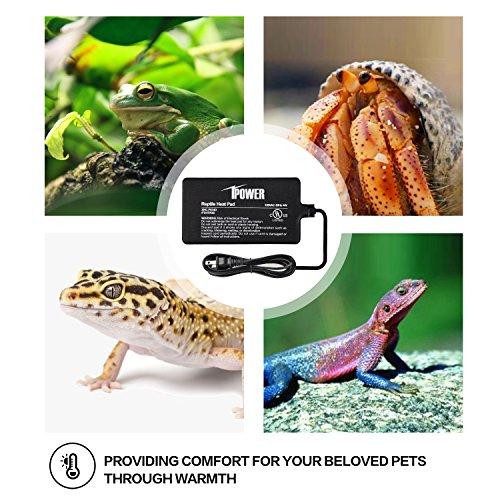 iPower Reptile Heat Pad Under Tank Terrarium Heater Heat Mat for Small Animals 6