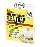 Victor M231 Ultimate Flea Trap Refills, (6 Refills)