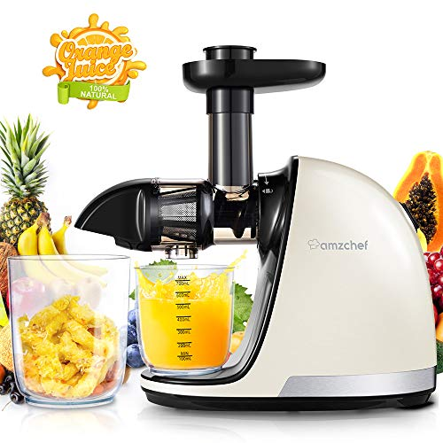 Slow Juicer,AMZCHEF Slow Masticating Juicer Extractor Professional Machine with Quiet Motor/Reverse Function,Cold Press Juicer with Brush,for High Nutrient Fruit & Vegetable Juice