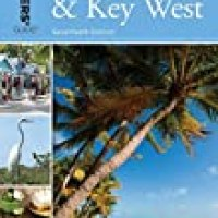 Driving an RV or Car in the Keys