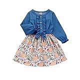 Infant Toddler Baby Girls Halloween Dress Ruffled Button Pumpkin Printed Long Sleeve Denim Skirt (Blue, 2-3T)